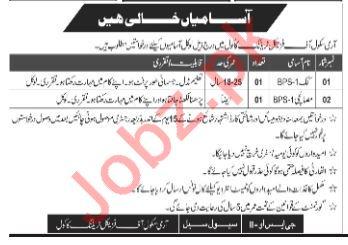 Army School of Physical Training Kakul Abbottabad Jobs 2018