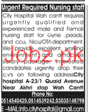 Female Nursing Staff Job in City Hospital