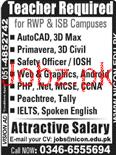 Male / Female Teachers Job Opportunity