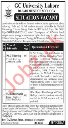 GC University Lahore Department of Zoology Jobs 2018