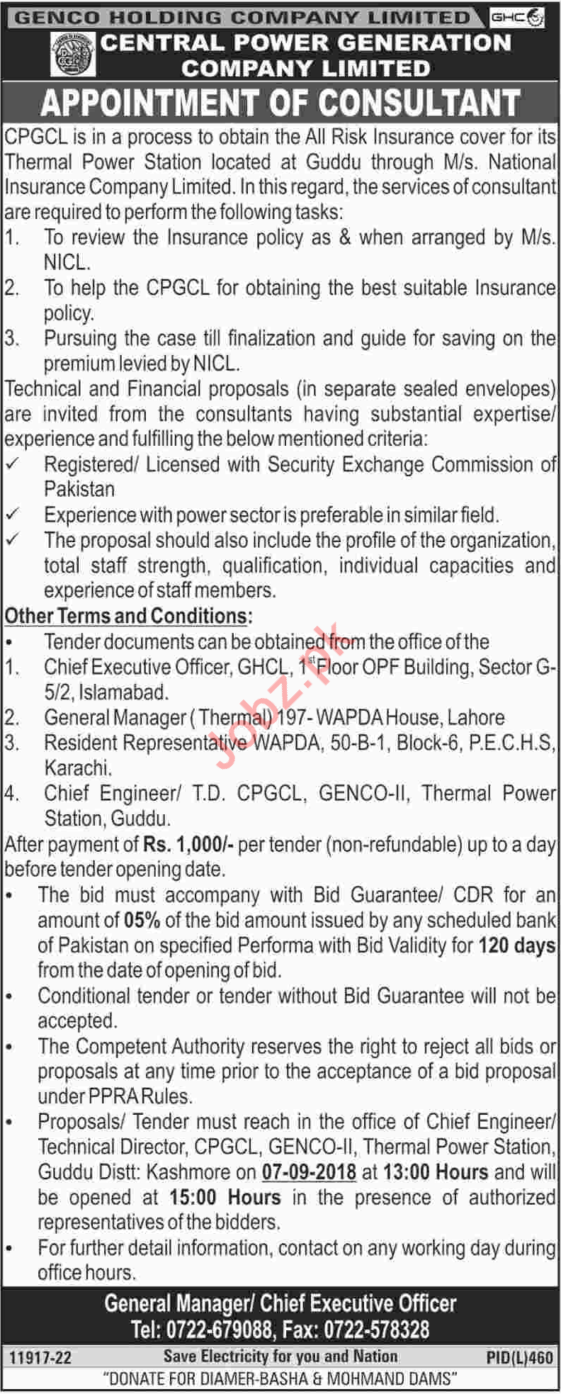 Central Power Generation Company Limited Consultant Job