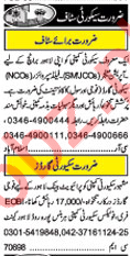 Manager, Supervisor, Security Guard, Accountant Jobs 2018