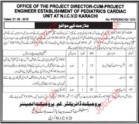 Computer Operator Jobs in NICVD Karachi