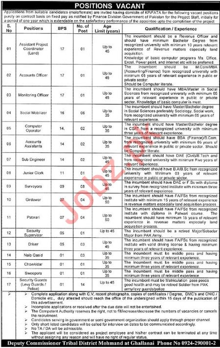 KPK Govt Assistant Project Coordinator Careers