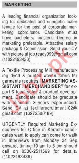 Dawn Sunday Classified Ads for Marketing Staff