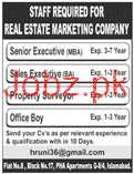 Sales Executives Job in Real Estate Group
