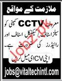 Sales Staff Jobs in CCTV Company
