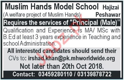 Muslim Hands Model School Principal Job 2018 in Peshawar KPK