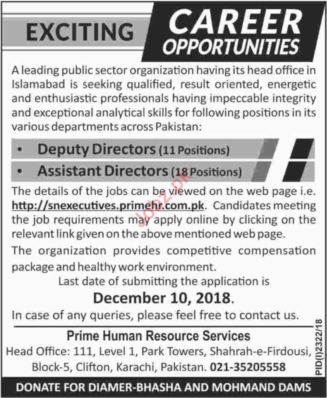 Deputy Directors Jobs at Prime HR Services