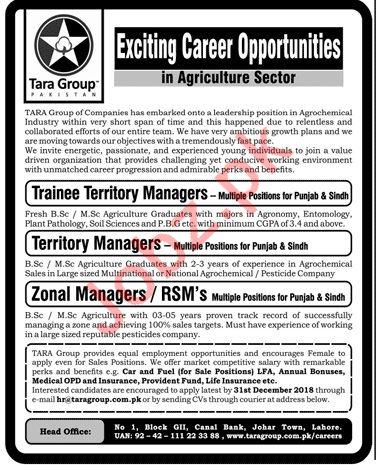 Tara Group Pakistan Trainee Territory Manager Jobs