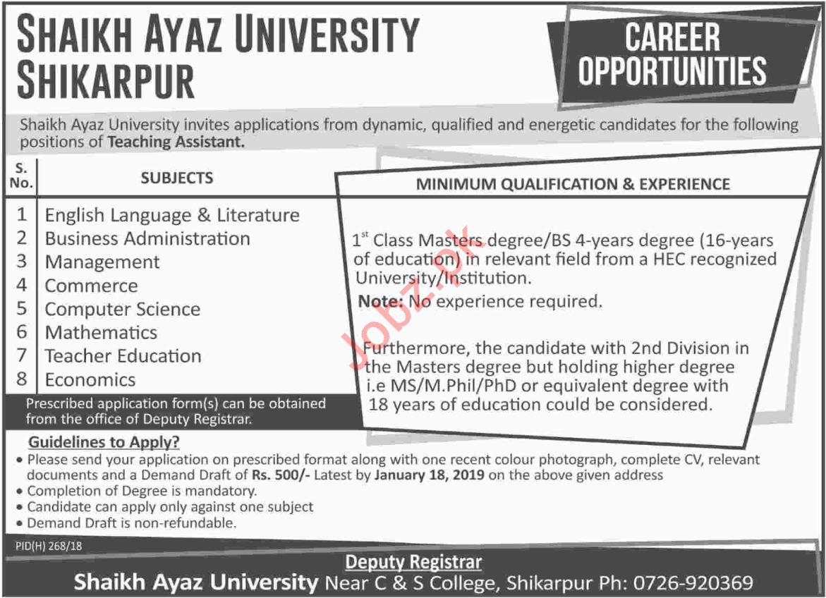 Shaikh Ayaz University Shikarpur Teaching Assistant Jobs