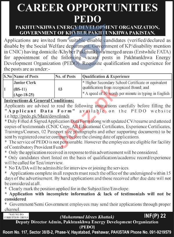 Pakhtunkhwa Energy Development Organization Clerk Jobs