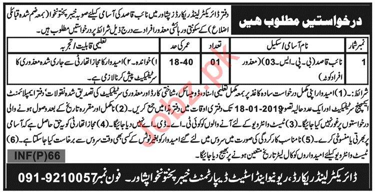Revenue & Estate Department Jobs 2019 in Peshawar KPK
