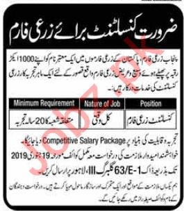 Punjab Agriculture Farm Job 2019 For Consultant in Kasur