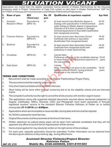 Fisheries Department Assistant Research Officer Jobs 2019