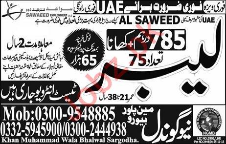 Al Saweed Company Labors Jobs 2019 in United Arab Emirates