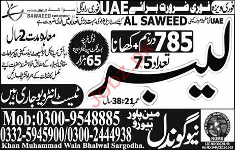 Labor Jobs in UAE