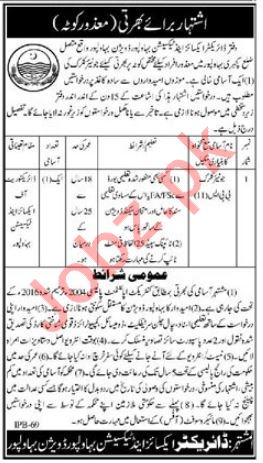 Excise and Taxation Department Job For Junior Clerk