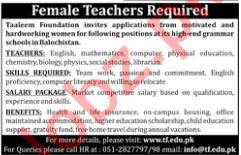English Teacher Jobs at  Taaleem Foundation