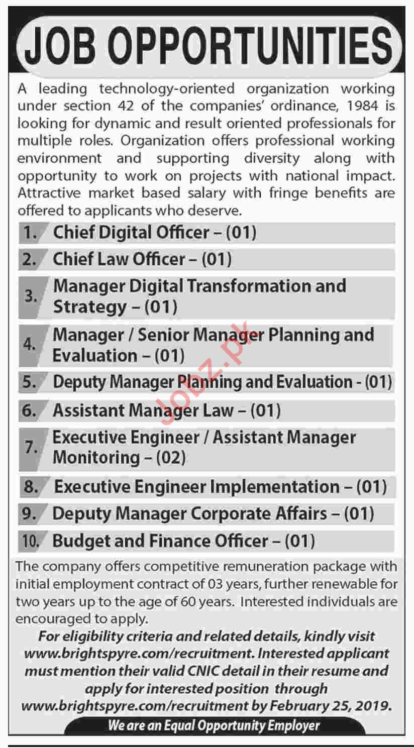 Technology Organization Chief Digital Officer Jobs