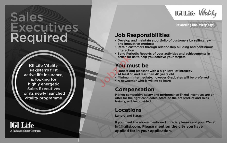 Sales Executive Jobs in IGI Life