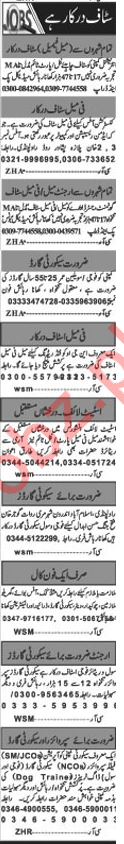 Khabrain Newspaper Classified Jobs 2019 For Islamabad