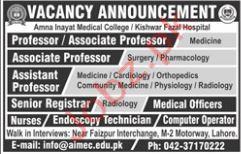 Professor jobs in Jobs in Amna Inayat Medical College