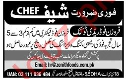 Zenith Food Lahore Jobs 2019 for Chef
