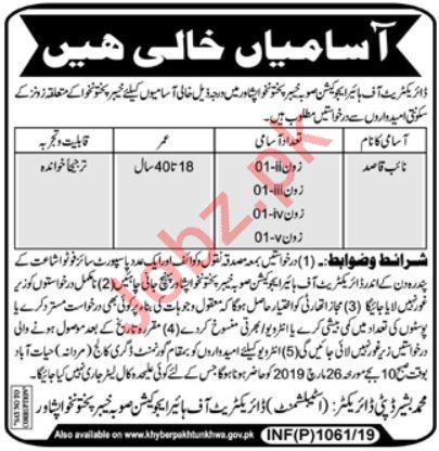 Higher Education Department Jobs 2019 in Peshawar KPK
