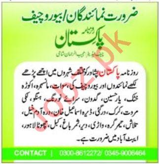 Daily Pakistan Newspaper Jobs 2019