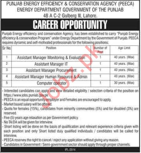 Punjab Energy Efficiency & Conservation Agency PEECA Jobs