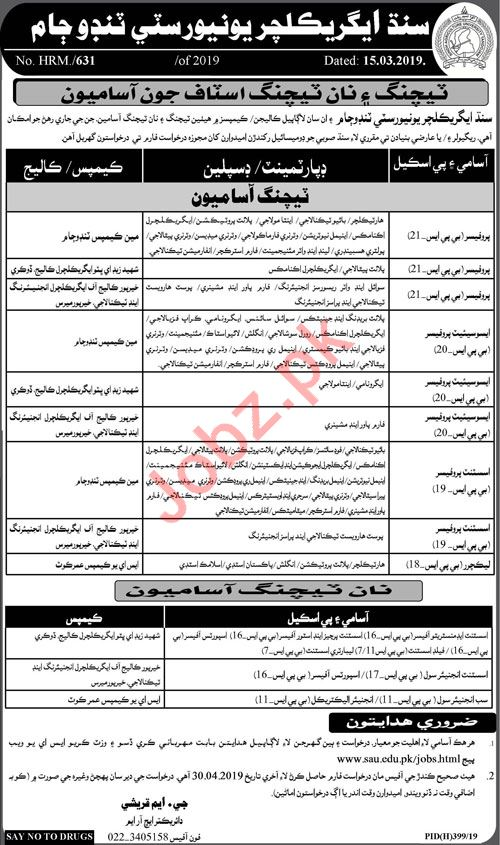 Sindh Agriculture University Faculty & Non Faculty Jobs 2019
