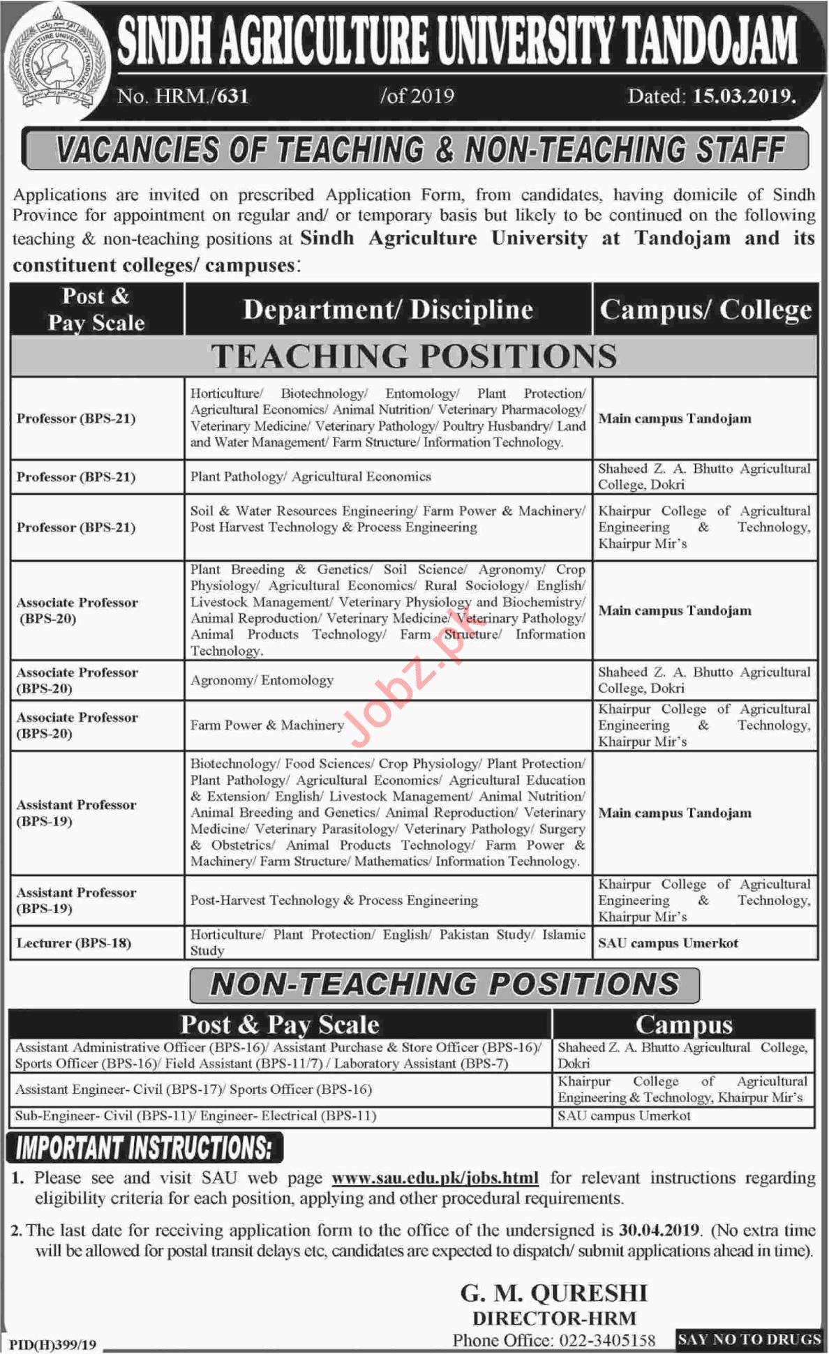 Sindh Agriculture University Professor & Lecturer Jobs 2019