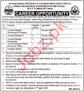 Punjab Energy Efficiency & Conversation Agency PEECA Jobs