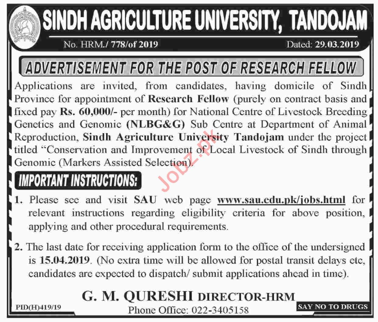 Sindh Agriculture University Tandojam Research Fellow Jobs