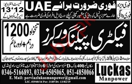 Factory Packing Worker Job  in UAE