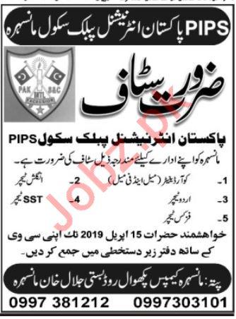 Pakistan International Public School PIPS Mansehra Jobs 2019