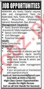 Hemayah EFU Family Takaful Company Jobs 2019
