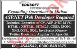 Edusoft System Solutions Web Developer Job in Multan