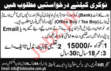 3 E Business Solutions Office Boy & Tea Boy Jobs 2019