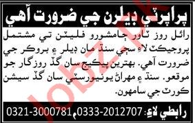 Property Dealer Job in Jamshoro