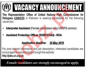 United Nations High Commissioner for Refugees UNHCR NGO Jobs