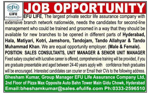 Efu Life Assurance Ltd Management Jobs 2019