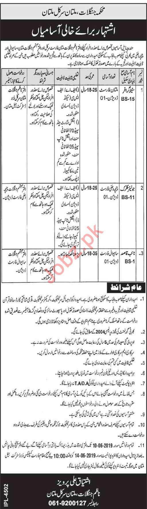 Forest Division Jobs 2019 in Multan, Sahiwal & Chichawatni