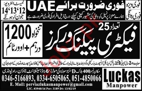 Factory Packing Worker Jobs 2019 in UAE