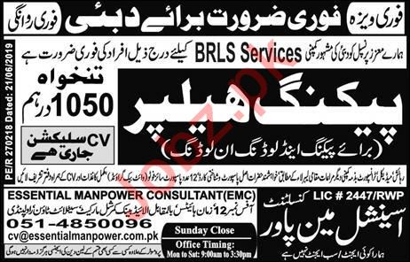 BRLS Services Company Jobs 2019 in Dubai UAE