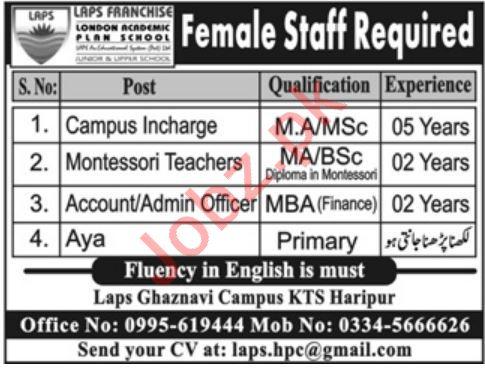Campus Incharge Montessori Teacher Jobs in Haripur