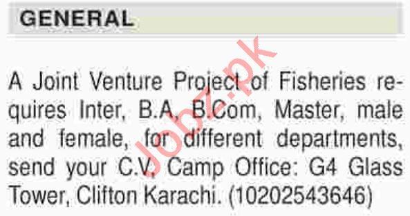 Daily Dawn Newspaper General Classified Jobs 2019
