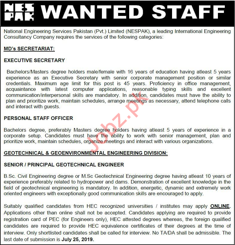 National Engineering Services Pakistan Pvt Ltd NESPAK Jobs
