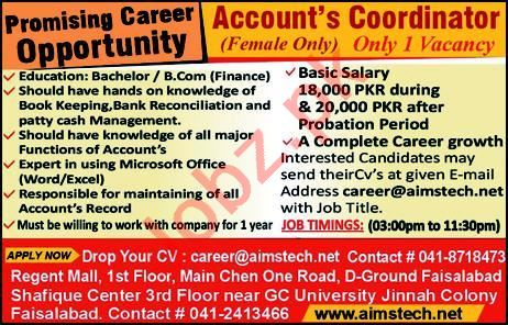 Accountant Coordinator Job in Faisalabad